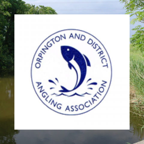Orpington & District Angling Association